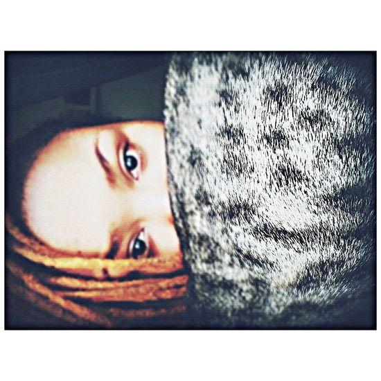 Hello World Ilovemycat Taking Photos