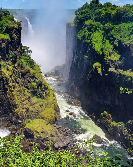 The Majestic Victoria Falls, Zambezi river, Zimbabwe Waterfall Mosi-oa-tunya Victoria Falls Victoria Falls Africa Zimbabwe Zambezi River Travel Photography Travel Destinations Travel River Mist Park Water Waterfall Tree Power In Nature Motion Sky