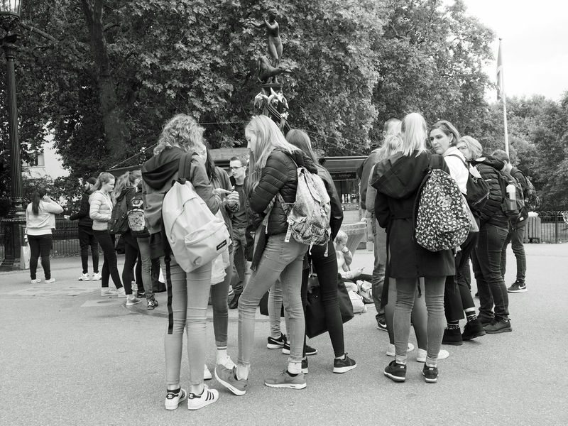 A flight of birds Adult Adults Only Blackandwhite Photography Casual Clothing Crowd Day Full Length Group Of People Large Group Of People Leisure Activity Lifestyles Nature Outdoors Outside Park People Real People St James Park London  Togetherness Tree Women Young Adult Young Women
