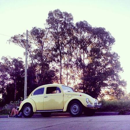 Auto Car Cars Autos @autosviejos Rastasmgph Ciudaddeazul Elpozo Autoviejo Escarabajo VW Volkswagen