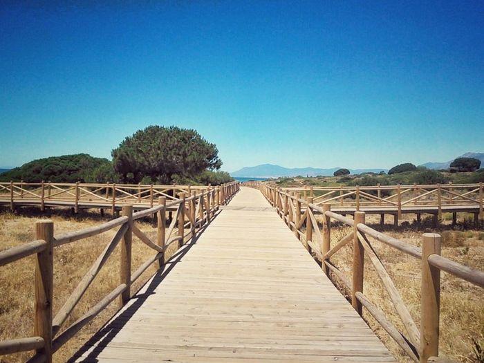 Summer way beach madera playa verano camino destino Sunny Clear Sky No People Destiny