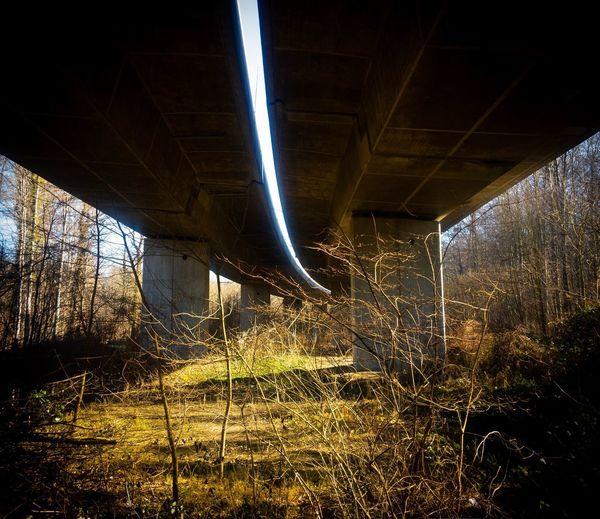 Aarebrücke bei