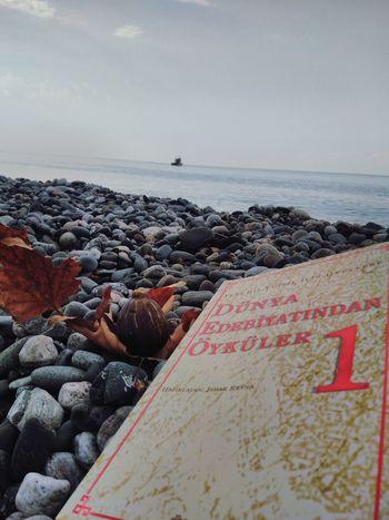 #leaf #book #sea #blacksea #ship #stone #reflection #amazing #fig #view #summer Fig Stone Blacksea EyeEm Selects Sea Wave Pebble Beach Coast Seashore Seascape
