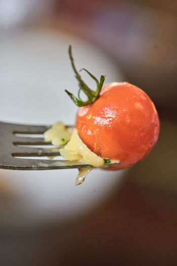 Close-up Drop Eating Utensil Focus On Foreground Food Food And Drink Fork Freshness Fruit Healthy Eating Indoors  Kitchen Utensil No People Red Selective Focus Still Life Tomato Vegetable Wellbeing