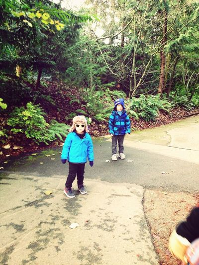 Woodland Park Zoo, Seattle