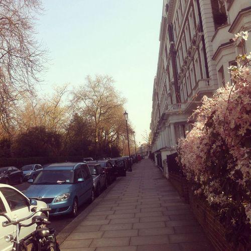 Streetphotography City Of London London
