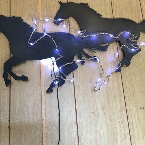 Indoors  Horse