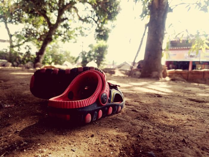 kiddy, kids, after play, ground, object Tree Red Sky