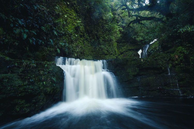 Beauty In Nature Blurred Motion Catlins Day Environment Falling Water Flowing Flowing Water Forest Growth Land Long Exposure Motion Nature No People Outdoors Plant Power Power In Nature Rainforest Scenics - Nature Tree Water Waterfall