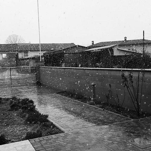 Marzo pazzo, pazzerello guarda il sole e prendi l'ombrello! March Marzo Snowday Picoftheday Instamoment 2016 Camadoi