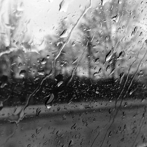 Rain Badday Newpicture Neuesbild neunewhashtaglikeseinfachlikeforlikel4lfollowusf4fmaybebadday♡ -k