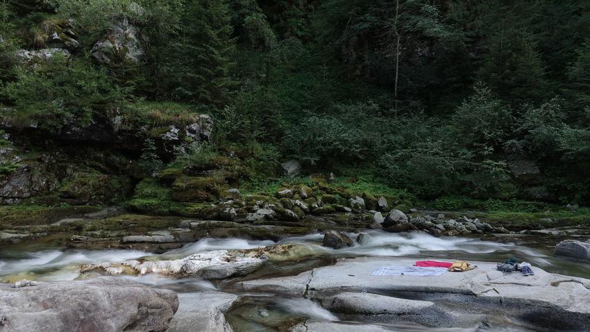 Switerland Mountains Ticino Alpine First Eyeem Photo EyeEm Best Shots Creek Stream Sand Landscape Flowing Water Stream - Flowing Water Moss