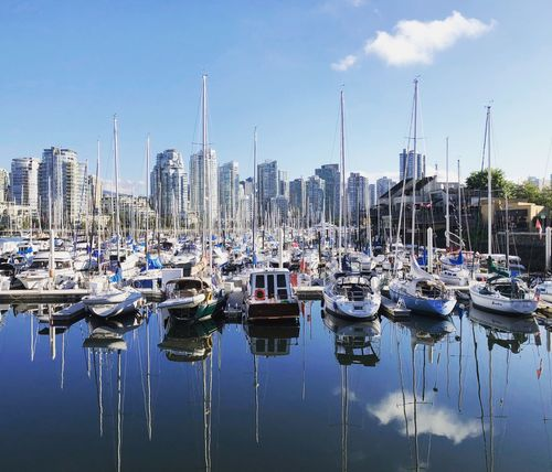 Sunny morning at the marina Sailboats Marina Morning Sun Summer Cloud Reflection Urban Landscape Cityscape Water Sky Building Exterior Nautical Vessel Moored Architecture Built Structure Harbor Transportation Nature Waterfront Outdoors Day Cloud - Sky Reflection Building No People Sailboat