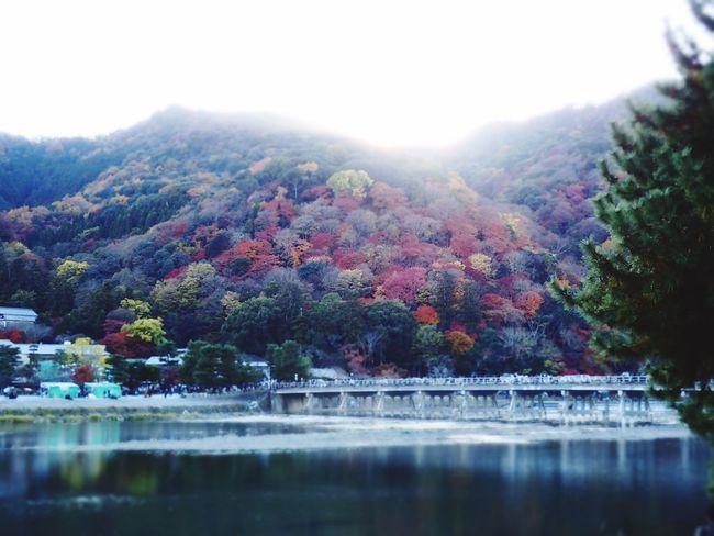 Togetsukyo Arashiyama Kyoto
