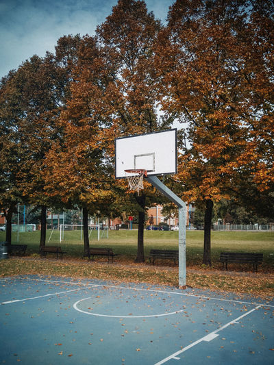 View of basketball hoop in park during autumn