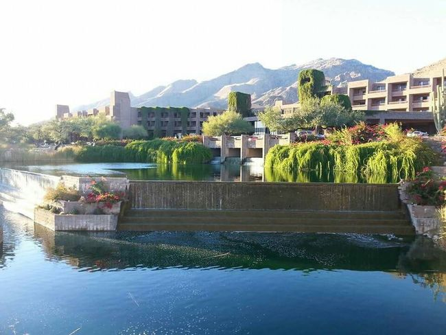 Tucson Arizona  Catalina Mountains  Picture Perfect Hotel Life Resort Home Beautiful View United States Landscape_photography Mountain View Water Reflections