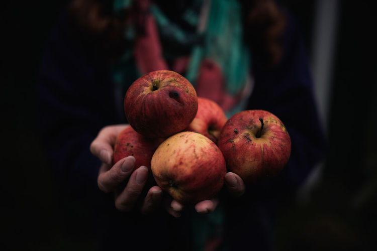 Close-Up Of Hand Holding Apples