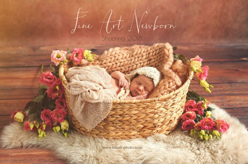Fine Newborn FineArt Shooting , Artwork Neugeboren Newborn Props Professional Photographer Fotoshooting Fine Art Gallery NewBorn Photography Love Indoors