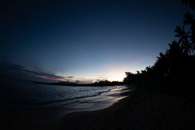 titian Sky Sunset Water Scenics - Nature Tree Tranquility Silhouette Nature Land Tranquil Scene Dusk No People Plant Beauty In Nature Beach Sea Night Outdoors Dark