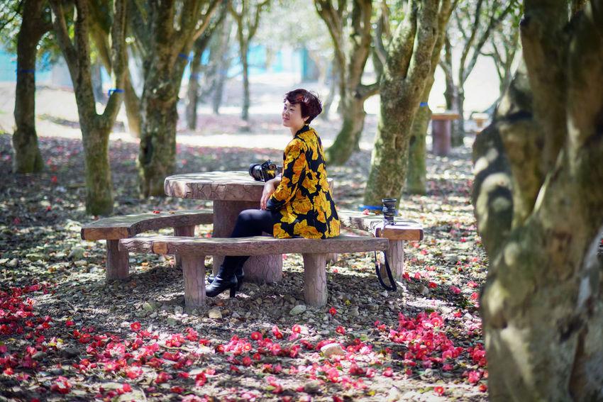 동백림 Korea Dongbag Beauty Tree Young Women Beauty Beautiful Woman Women Smiling Beautiful People Ceremony Full Length Flower Countryside Woods Maple Tree