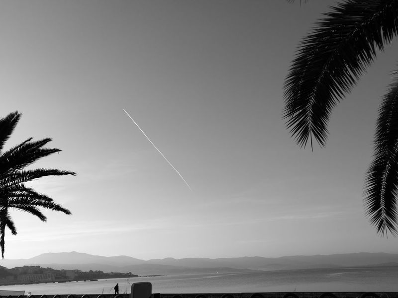 Outdoors Airplane Sky Tree Beach Welcome To Black Ajaccio Noirblanc Noirphotography Noir & Blanc  Blackwhite Black And White Collection  Light And Shadow Corse Travels Voyager Travel Travel Photography Welcome To Black Long Goodbye Black And White Friday The Traveler - 2018 EyeEm Awards