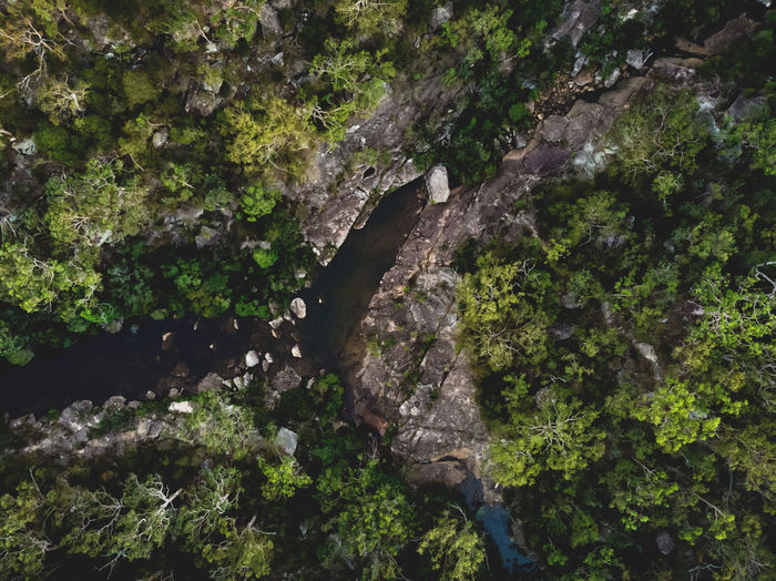 Australian bushland ❤️ Aerial shot of a pool in the Royal National Park, Sydney. Aerial Shot Australia Australian Bushland Brook Creek DJI Mavic Air Adventure Aerial Photography Bushland Bushwalk Drone Photography Forest Growth High Angle View Hiking Adventure Land Lush Foliage Nature Outdoors Pool Power In Nature Rock Royal National Park Scenics - Nature Tranquility