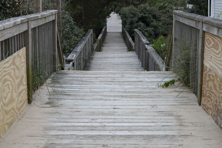 Boardwalk Built Structure Day Diminishing Perspective Empty Footbridge Green Color Growth Long Narrow Nature No People Outdoors Pathway Plant The Way Forward Tranquil Scene Tranquility Tree Vanishing Point Walkway Wood Wood - Material Wooden