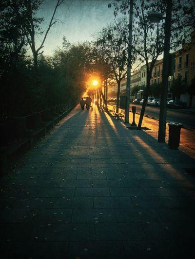 Paseo De La Ribera
