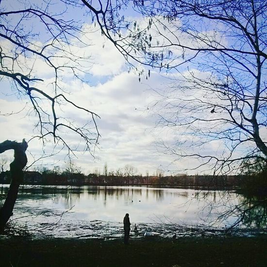 Lakeview Peace And Quiet Relaxing Lake View Lakeshore Brunswick Braunschweig Lake Trees And Sky