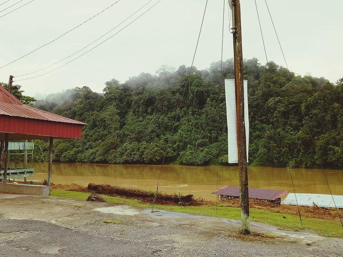 Morning Fresh~ o2 Freshness Relaxing Morning Belaga River Tree Water Sky RainDrop Rain First Eyeem Photo