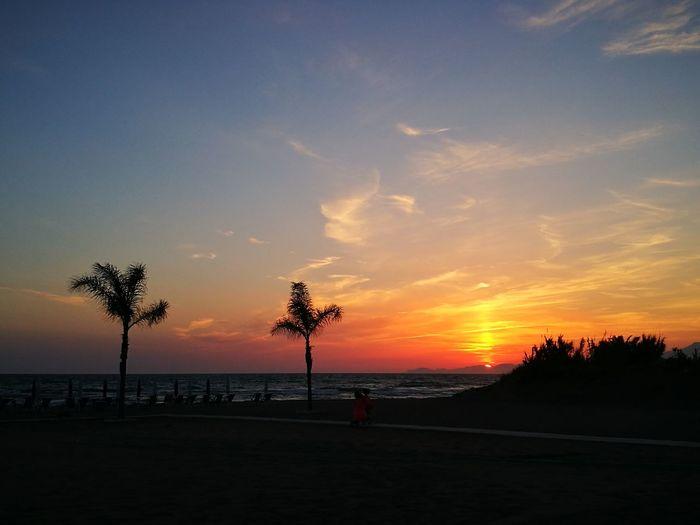 Sunset. The
