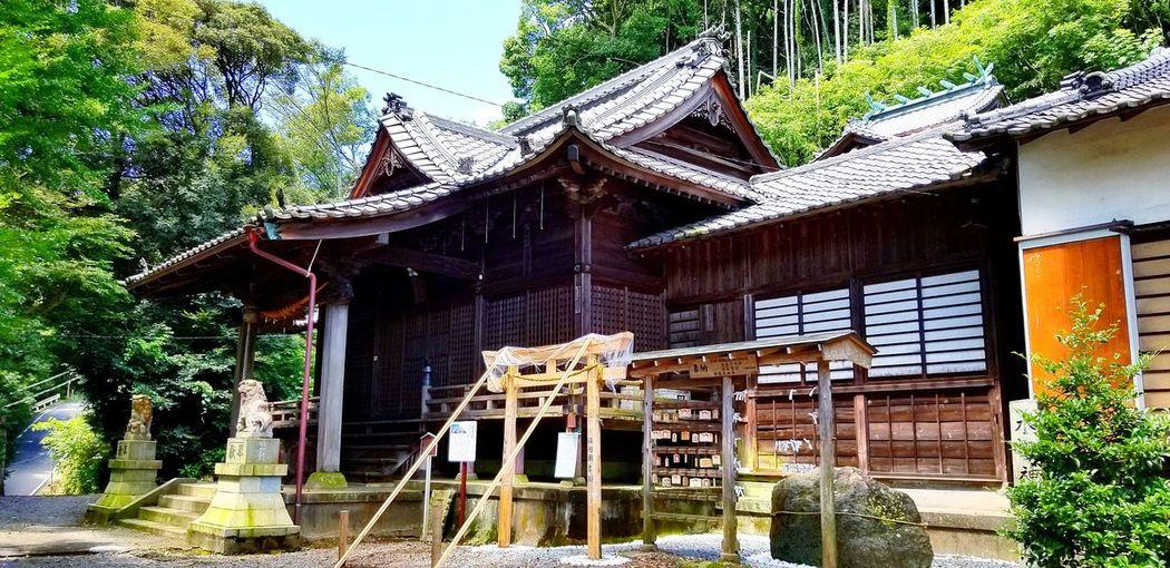 梅雨明けしたのかな?朝から地元のお仕事をしています。青空の下の岩渕八坂神社。今月21日には、この神社のお祭りがあります。新しく「鳥居講」の立て札と「駿河国岩淵 鳥居講中」と書かれた鳥居講の時に建てる鳥居に比べると小さい物が建てられていました。さあ、夏も本番ですね。是非、21日のお祭りに皆さん、いらして下さい。 蝉の声 八坂神社 岩渕祇園祭 富士市 Sky お仕事 青空の下 夏 Summer 神社 Tree Place Of Worship Traditional Building Wood - Material Architecture