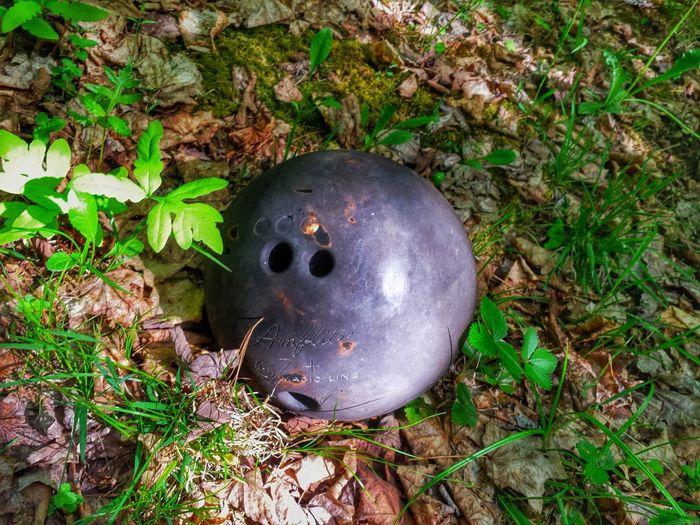 A walk in the woods Hidden Bowling Ball Odd Oddbeauty Nature Walking Around