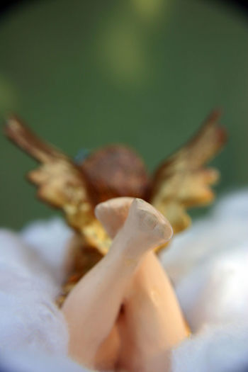 A decorative angel seen from behind. Angel, Engel, Weihnachtsdekoration, Dekoration, Decoration, Von Hinten, From Behind, Flügel, Deko Animal Themes Close-up Day Decorative Flower Nature No People Outdoors Selective Focus