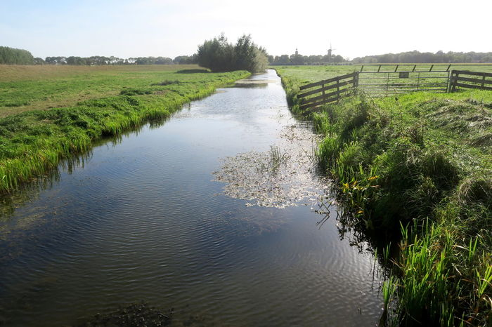 Dutch landscapes; water and sky Tranquil Scene Tranquility Plant Landscape Scenics - Nature Beauty In Nature Day Field Nature Sky Environment Grass Land Non-urban Scene Green Color Outdoors Dutch Landscape Ditch Grassland Stream Blue Sky Water_collection Canals And Waterways Canal Rural Scene