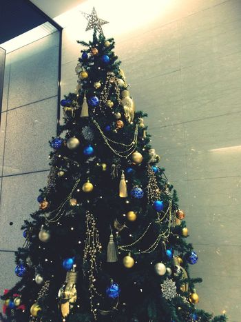 Christmas Decoration Christmas Tree Christmas Lights Celebration Christmas Decoration Tradition No People Holiday - Event Illuminated Christmas Ornament Indoors  Tree Celebration Event Architecture Christmas Bauble Day 11/29, 2016⛅️ 毎日バタバタ🏃早歩き👣