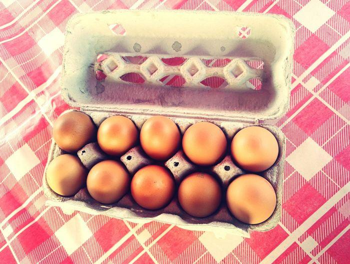 EyeEm Selects Egg Egg Carton Day Summer Playing Summercamp2017