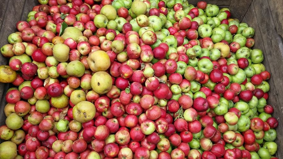 High angle view of apples in wooden box