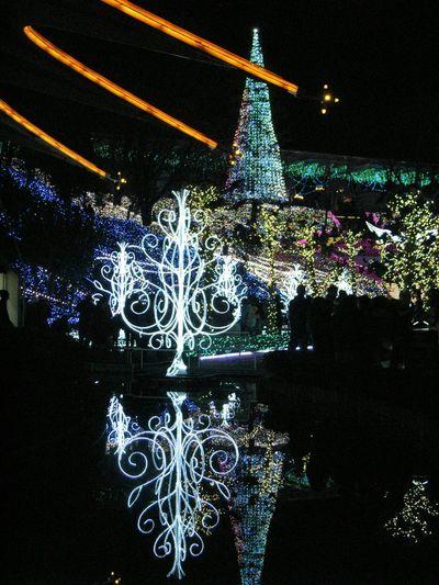イルミネーション Japan Illumination Winter Light