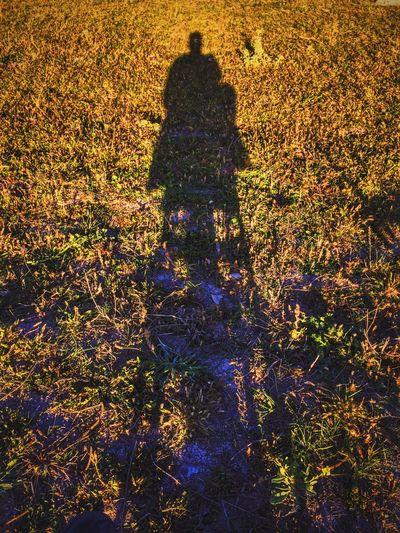 Shadow Gölgeler Gün Batımı 🌅