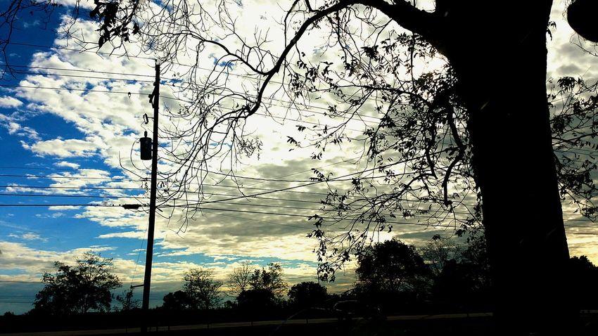 Learn & Shoot: Simplicity Beautiful Nature Louisianaphotography Eye Of Ky