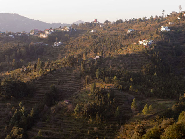 First sunbeams over Mukteshwar a village in Uttarakhand India Himalayas India Morning Light Mukteshwar Rural Agriculture Architecture Beauty In Nature Building Exterior Day Fields Growth High Angle View Landscape Mountain Nature No People Outdoors Sky Tree Uttarakhand Village Village View