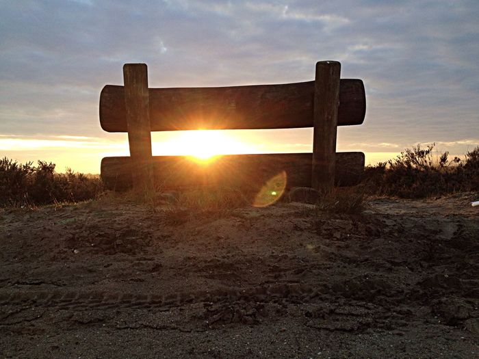Bench Outdoors Nature Sunrise