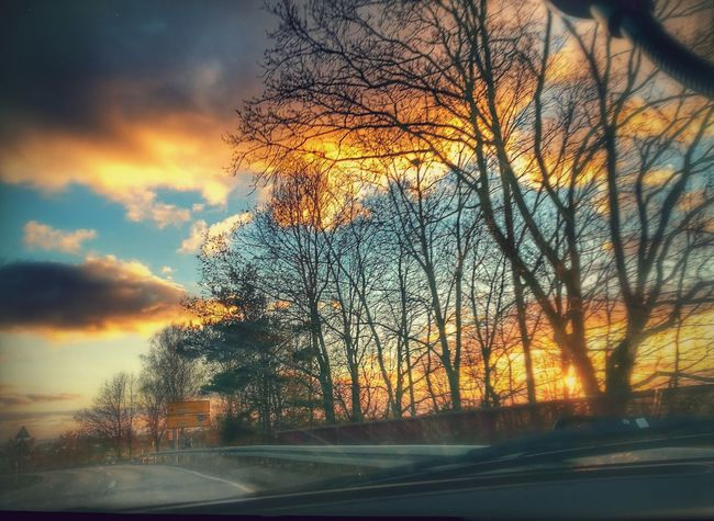 Shot out of the car. Beautiful Sunset♥♥Good Evening EyeEm Sunset Tree Orange Color Sky Nature No People Road Outdoors Beauty In Nature Scenics Day Clouds Multi Colored Colour Your Horizn Mobility In Mega Cities The Great Outdoors - 2018 EyeEm Awards