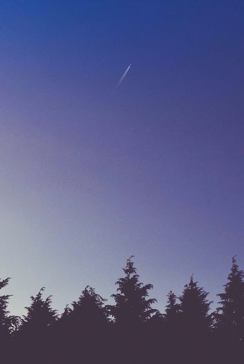 Shoot for the stars First Eyeem Photo