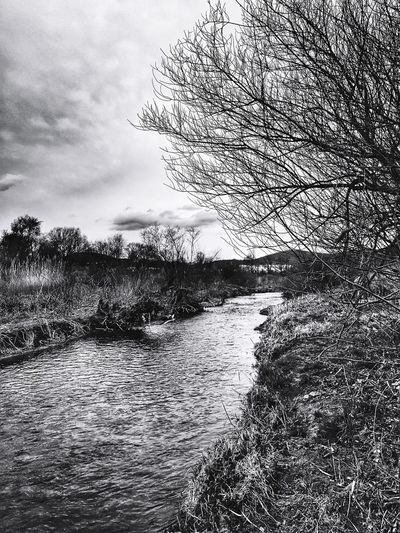 IPhoneography Black And White River Wien Fluß Vienna River Nature