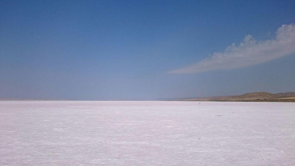 Lakeshore Lake Lake View
