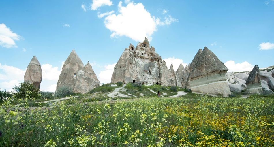 the Stone Carving in Cappadocia ,and Wildflowers