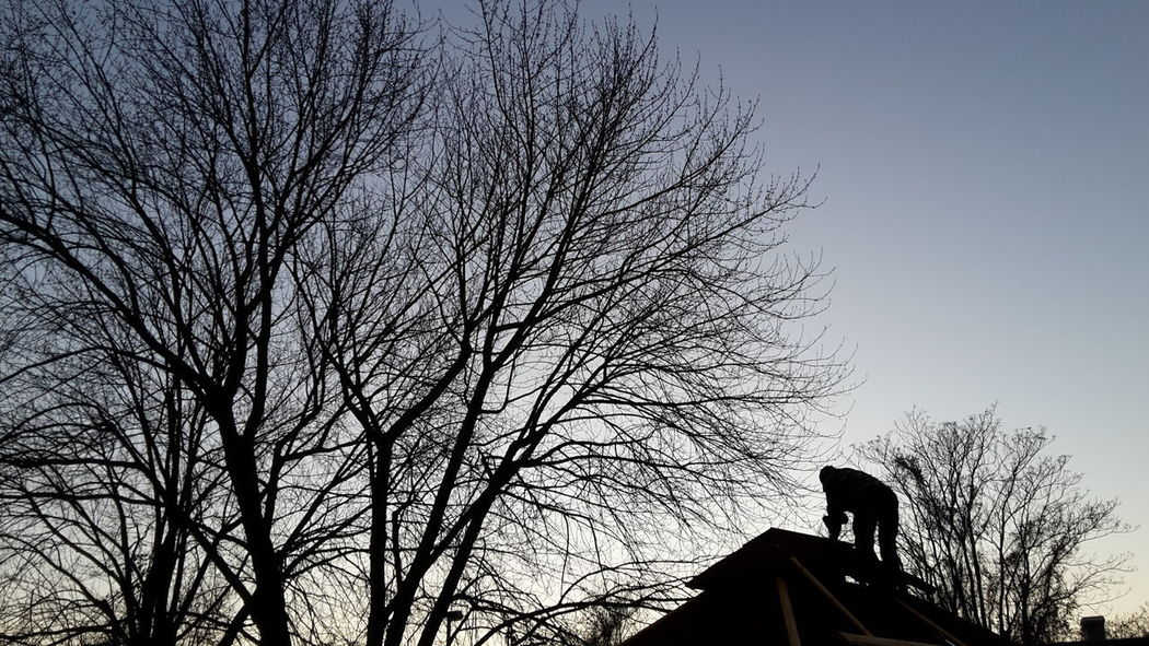 Man At Work Silhouette Tree Architecture Outdoors Built Structure No Filter, No Edit, Just Photography No Edits No Filters Silhouette Nature On The Roof Of A Building Samsungs5mini