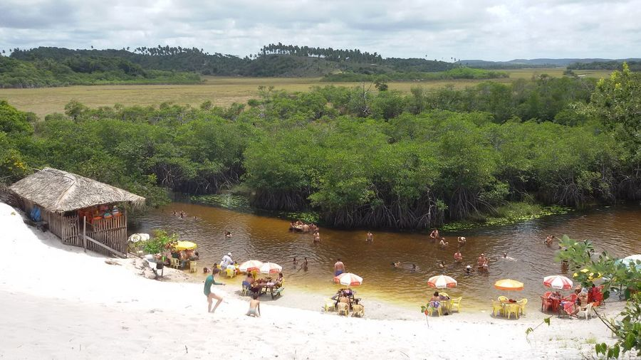 Agriculture Rural Scene Water Outdoors Cloud - Sky Adult Day People Tree Men Sky Adults Only Nature Food Only Men Mammal Rio River Areia Balneario Cajueirinho Bahia Litoral Norte Brazil Brasil ♥